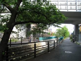 撮影ポイント(二ヶ領用水と東海道新幹線の交点)
