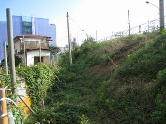 西側(武蔵小杉駅側)の側道スペース