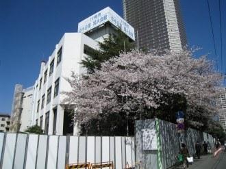桜の咲く中小企業婦人会館