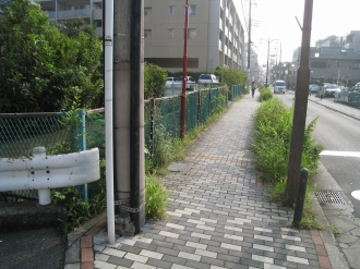 サライ通り商店街の用水路